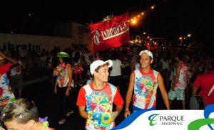 carnaval8